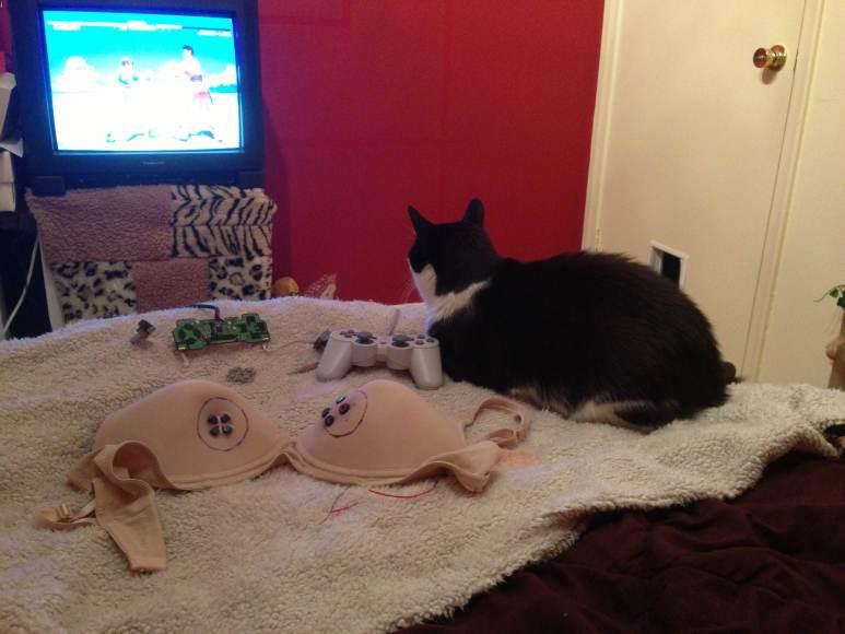 Cat and controller bra prototype